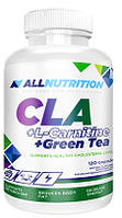 CLA + L-Carnitine + Green Tea All Nutrition (120 капс.)