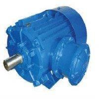 Взрывозащищенный электродвигатель АВ( АИММ)225М2 55кВт 3000об/мин