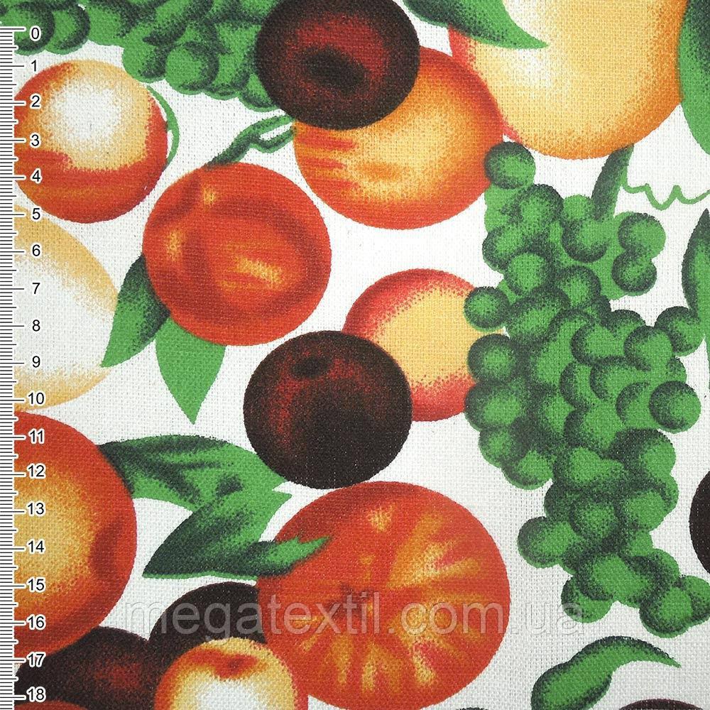Тканина меблева біла з фруктами ш.150 (20406.025)
