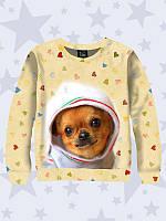 Свитшот детский Собака в костюмчике
