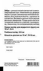 Уцінка (термін до 01.2021р) Кабачок Зебра, 1 г. СЦ Традиція, фото 2