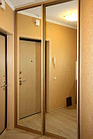 Двери для шкафа-купе с зеркалом