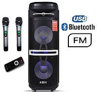 Портативная акустика TS210-05 /250W  (USB/FM/Bluetooth/Пульт ДУ), фото 1