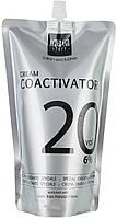 Крем-окислитель укрепляющий 6% Alter Ego Cream Coactivator Special Oxidizing Cream 1000 мл