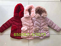 Куртки зимние на меху на девочек оптом, Seagull , 1-5 рр