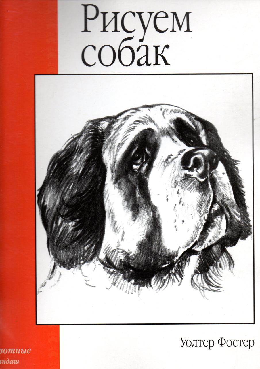 Рисуем собак (Уроки рисунка и живописи). Уолтер Фостер