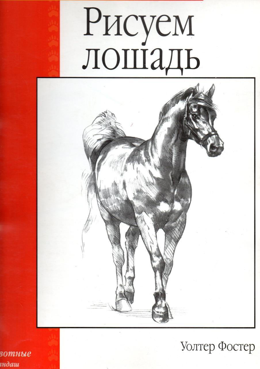 Рисуем лошадь (Уроки рисунка и живописи). Уолтер Фостер
