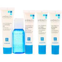 Набір по догляду за обличчям (Skin Care Essentials), Andalou Naturals, 5 шт, фото 1