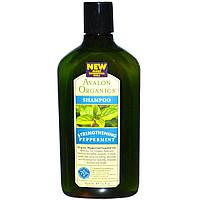 Шампунь для волос (мята), Avalon Organics, 325