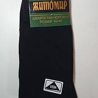 Мужские носки Житомир Талько 42-45, черные