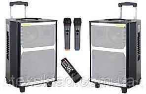 Аккумулятоные колонки TWS-1202 STEREO с микрофоном 400W (FM/USB/Bluetooth)