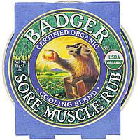 Бальзам от боли в мышцах, охлаждающий, Badger Company, 56 г