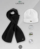 Мужской комплект из шапки и шарфа лакоста, Lacoste, реплика, фото 1