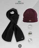 Мужской комплект шапка + шарф слакост, Lacoste, реплика, фото 1