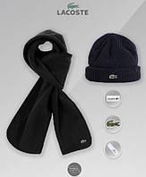 Комплект мужской шапка и шарф лакост, Lacoste, реплика, фото 1