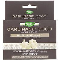 Чеснок, Garlinase Fresh, Enzymatic Therapy, 100 таблеток