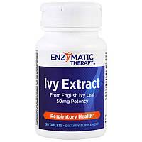 Отхаркивающее средство Enzymatic Therapy, 90 таблеток, фото 1