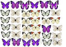 Вафельна картинка Метелики 18