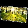 HGlass IGH 5010 фотопечать 500/250 Вт инфракрасный стеклокерамический панельный обогреватель
