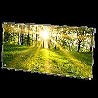 HGlass IGH 5010 фотопечать 500/250 Вт инфракрасный стеклокерамический панельный обогреватель , фото 1