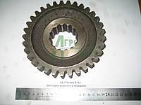 Шестерня ведомая 2 передачи КПП ЮМЗ 8240 65-1701055 Z=33 , фото 1