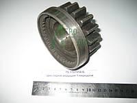 Шестерня ведущая 1 передачи КПП ЮМЗ 8280 Z=17 75-1701054-Б , фото 1