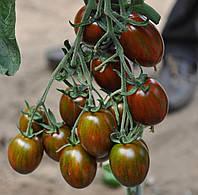 Семена томата Криспина Плюм F1, Esasem 500 семян