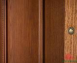Дверь межкомнатная Двери Белоруссии Гранд орех ПГ, фото 4