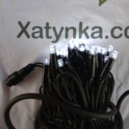 Новогодняя светодиодная гирлянда УЛИЧНАЯ 100LED 10м белый, фото 2