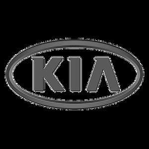 Автомобильные чехлы на Kia