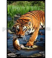 Полотенце пляжное Home line Тигр 75х150 см