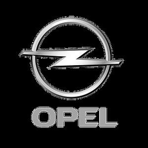 Автомобильные чехлы на Opel