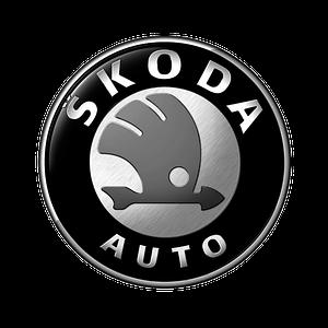 Автомобильные чехлы на Skoda