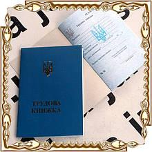 Трудовая книжка (синяя) с гологр. (146007)