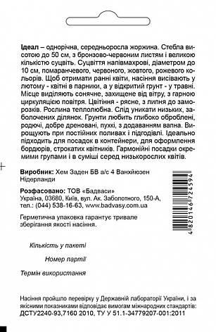 Жоржина Ідеал, суміш 0,1 г. СЦ, фото 2