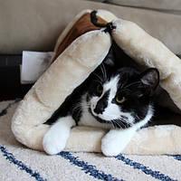 Kitty Shack Домик-лежанка для собак и кошек  (V-S), фото 1