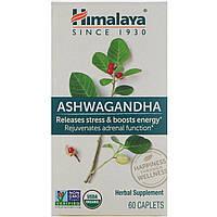 Ашваганда, Ashwagandha, Himalaya Herbal Healthcare, 60 каплет