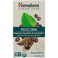 Мукуна (Капикачху), Mucuna,  Himalaya Herbal Healthcare, 60 таблеток