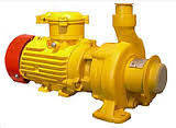 КМ 100-80-160Е-м (100куб.м/ч;32м;15кВт)  1ExdIIBT4 с бачком охлаждения, стальн. проточная часть, фото 2