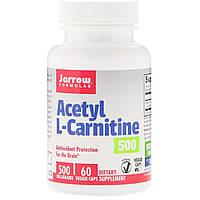 Ацетил -L карнитин, Jarrow Formulas, 500 мг, 60 капсул