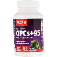 Экстракт виноградных косточек, Jarrow Formulas, OPCs + 95, 100 мг, 100