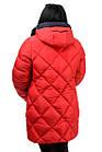 Женская зимняя куртка Модель №89 (красный), фото 2