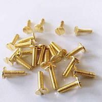 Декоративний Гвинт (м-4) (Gold) (тонка капелюшок, шліц, викрутка)