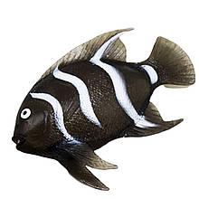 Рыба тянучка (черная)