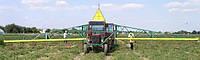 Транспортер овощной конвейерный ТОК-18 Роста