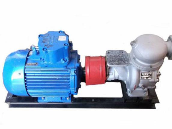 Электронасосный агрегат АСЦЛ-20-24 Г (левый) для нефтепродуктов и спирта, фото 2