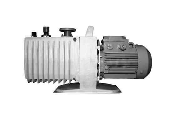 Насос 2НВР-5Д вакуумный пластинчато-роторный, фото 2