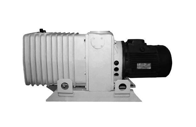 Насос 2НВР-16 ДМ вакуумный пластинчато-роторный , фото 2
