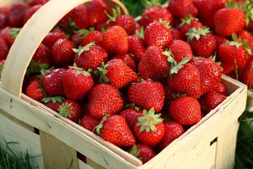 польза ягод клубники