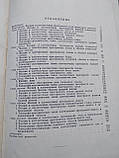 Хирургическая анатомия фасций и клетчаточных пространств человека Медгиз 1961 год, фото 8